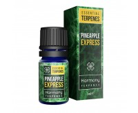 Terpenextrakt Pineapple Express (Harmony) 5 ml