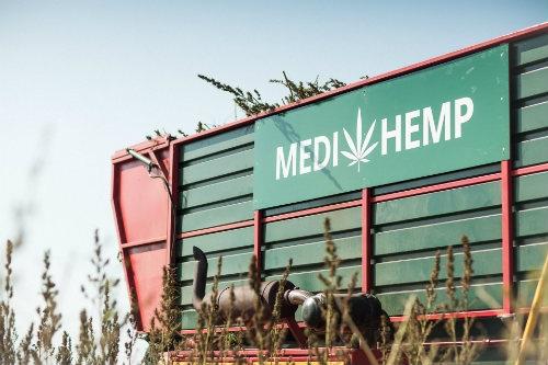 Medihemp CBD Produzent Dutch Headshop