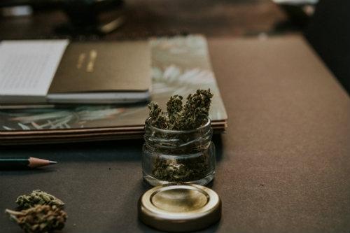 Reines Cannabis Rauchen Dutch Headshop